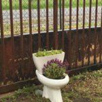 Détourner des WC en jardinière recyclerie de Bazas
